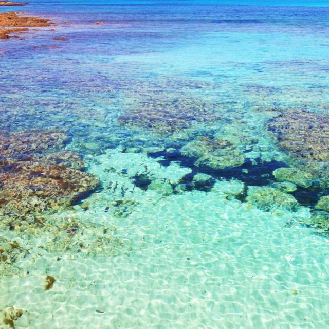 Sardinia, spiaggia della Pelosa. Italy