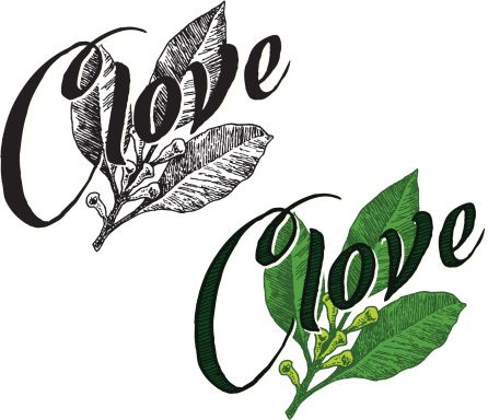 clove-with-text-vector-id165979829 (446×384)