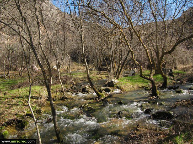 Ruta por la hoz de Pelegrina, Barranco del Rio Dulce, Guadalajara #pelegrina #riodulce #guadalajara #castillalamancha #mirecreo #senderismo #hiking #parquesnaturales #turismo #tourism #excursiones #trips #spain #nature
