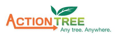 Proper tree care is an important thing and there are number of tree servicing companies, which are performing this task. They keep the trees in proper shape by cutting down unwanted branches. These companies also remove old and damaged trees along with leftovers of fallen and cut-down trees through stump grinding.