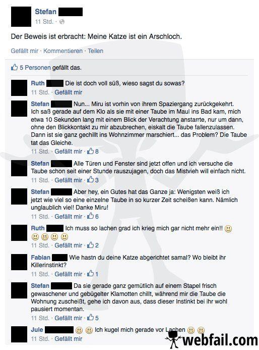 Miru, die Arschloch-Katze - Facebook Fail des Tages 03.05.2015 | Webfail - Fail Bilder und Fail Videos