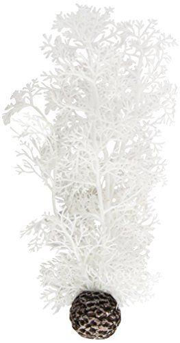 biOrb Sea Fan, Medium, White Biorb http://www.amazon.co.uk/dp/B006M9FC2O/ref=cm_sw_r_pi_dp_2mwIwb09NZH3X