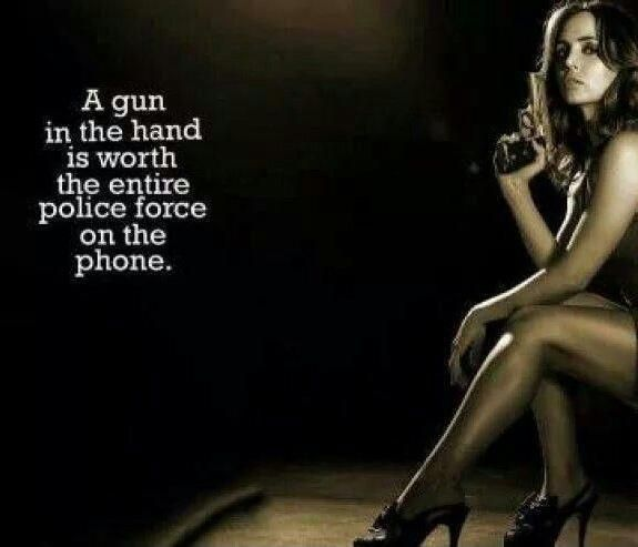 Image result for pro second amendment