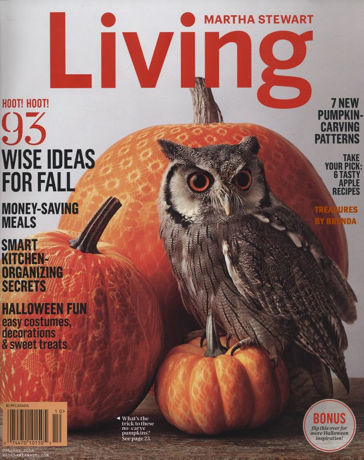 Martha Stewart Halloween Magazine Index 2014 Pumpkins Owl Pumpkin And Ha