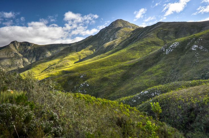 Robinson's Pass and the Outeniqua Mountains, Garden Route, South Africa.