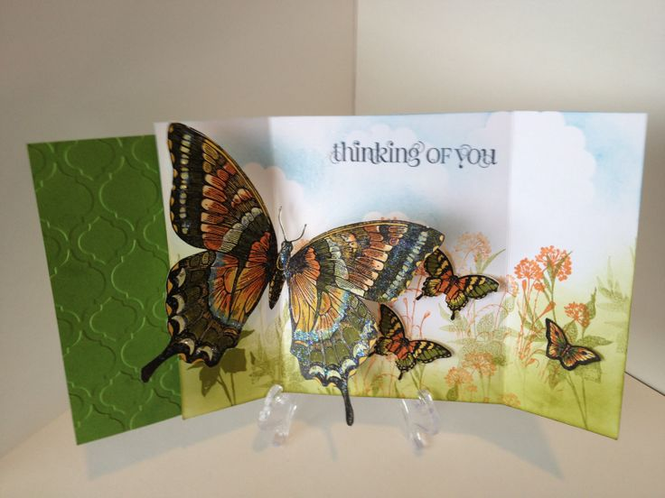 Stampin' Up Swallowtail Stamp - I created this lovely card from a fantastic tutorial shared from Eva Gail.