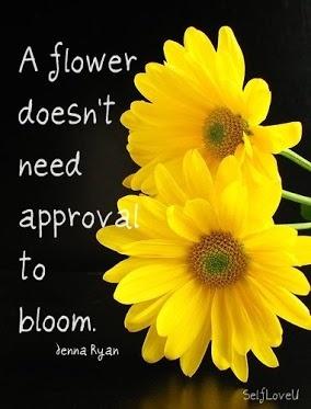 Self Love U: Approval