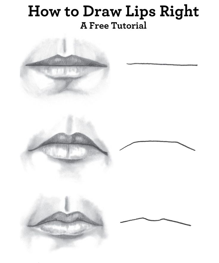 Best 25 how to draw faces ideas on pinterest draw faces best 25 how to draw faces ideas on pinterest draw faces drawing techniques and simple face drawing ccuart Image collections