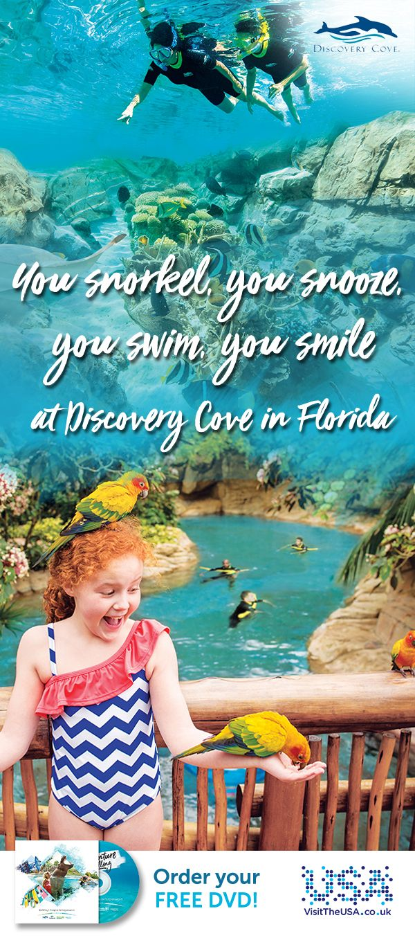 Tranquillity and exhilaration await you at Discovery Cove, the only place in Orlando where you can swim with a dolphin.