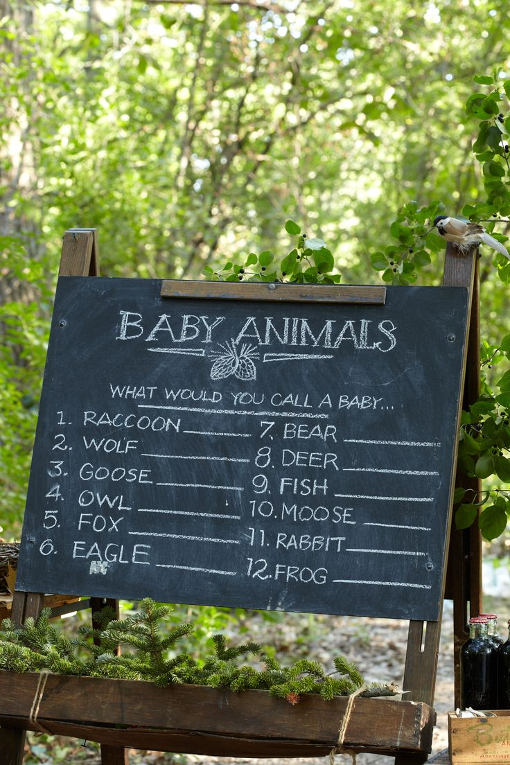 Woodland fairy party activity - Baby Animal Name Game.
