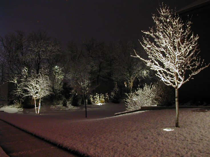 7 best syracuse lightscapes landscape lighting images on pinterest winter up lighting and down lighting from mature trees workwithnaturefo