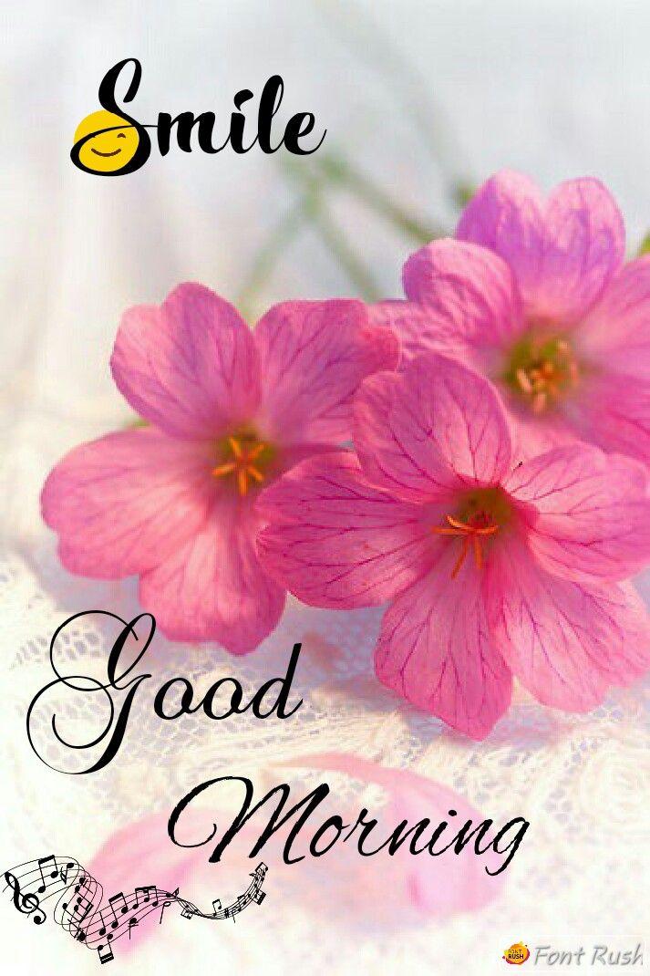 Good Morning Good Morning Flowers Good Morning Beautiful Flowers Good Morning Beautiful Pictures