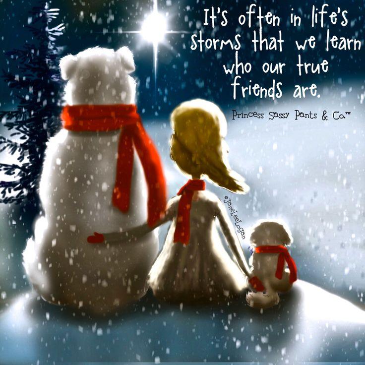"Life's Storms...."" True Friends"""