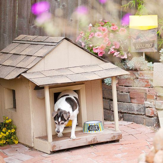 Small Backyard Ideas Dogs: 47 Best Images About Dog-Scaped Yards On Pinterest