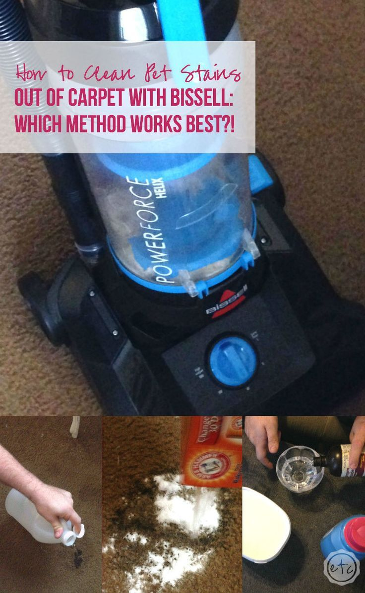 how to work the bissell carpet cleaner