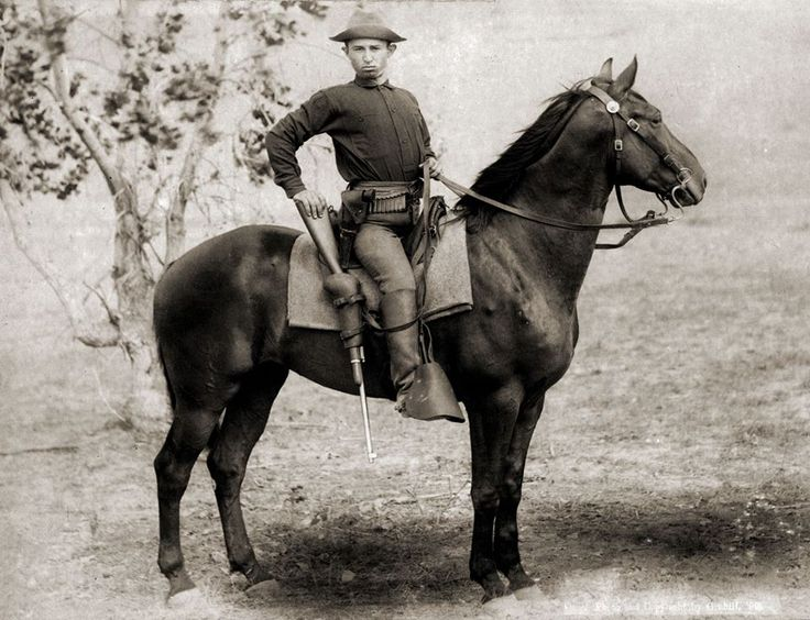 This is a photo of a trooper riding a U.S Cavalry remount ...