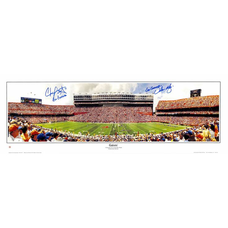 "Chris Leak, Urban Meyer Florida Gators Fanatics Authentic Autographed 10"" x 30"" Photograph with Go Gators Inscription"