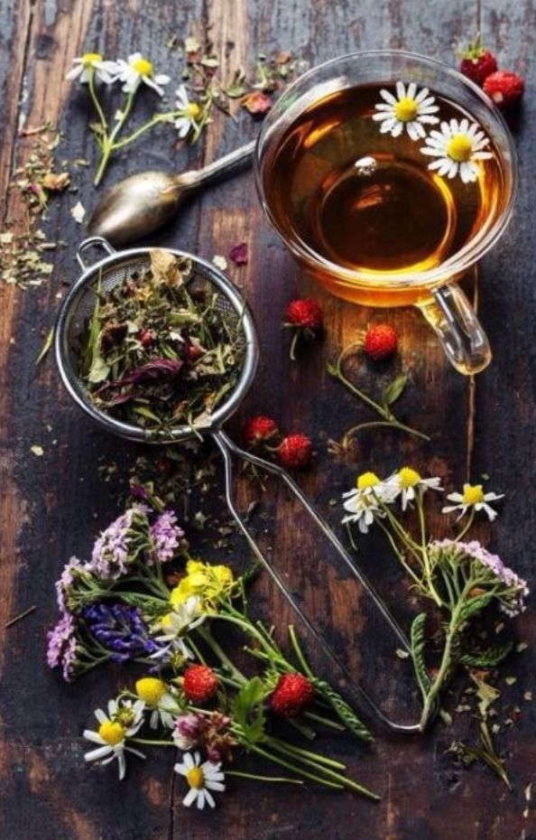 How to Use Violets. You can start with making tea! Fresh herbs or dried may be used. A little can go a long way.  #plantbased  #healing  #homeopathic  #rememdy  #DIY  #healingplants