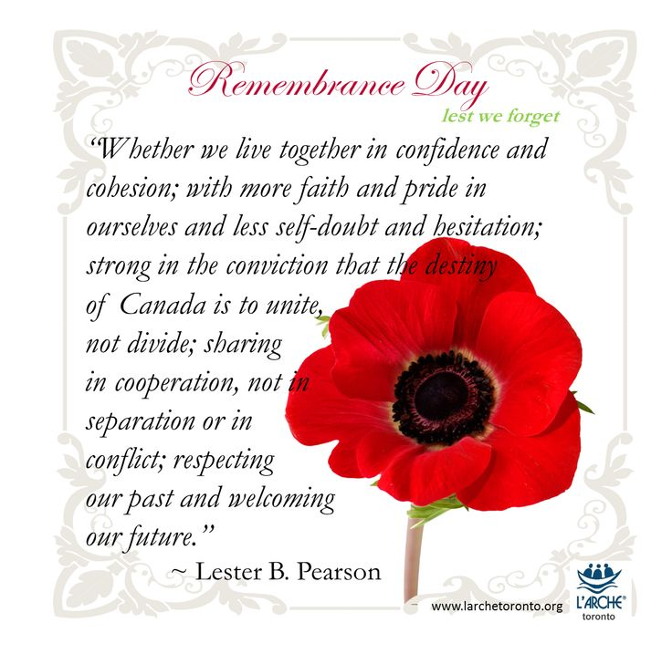 We remember those who have lost their lives for their country. Let's honour them by valuing the peace and freedom that they sought for us. #remembrance #memorial #pearson #quotes #inspiration