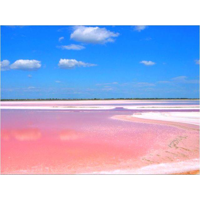 Les Salines de Aigues Mortes, Camargue, France