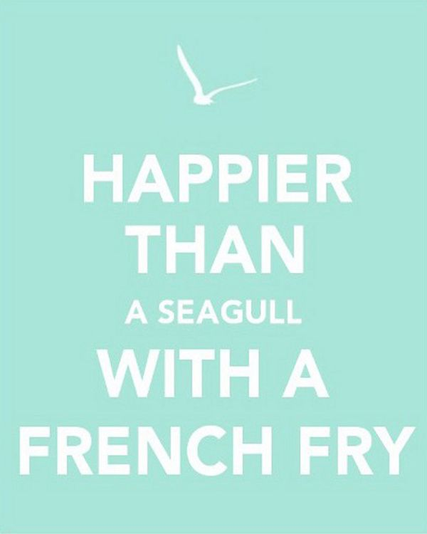 The original, which inspired the one with the shells    Happier than a seagull with a french fry