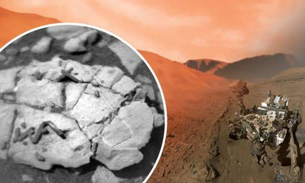 NASA Discover LIFE ON MARS,NASA rover finds unique fossils on Red Planet