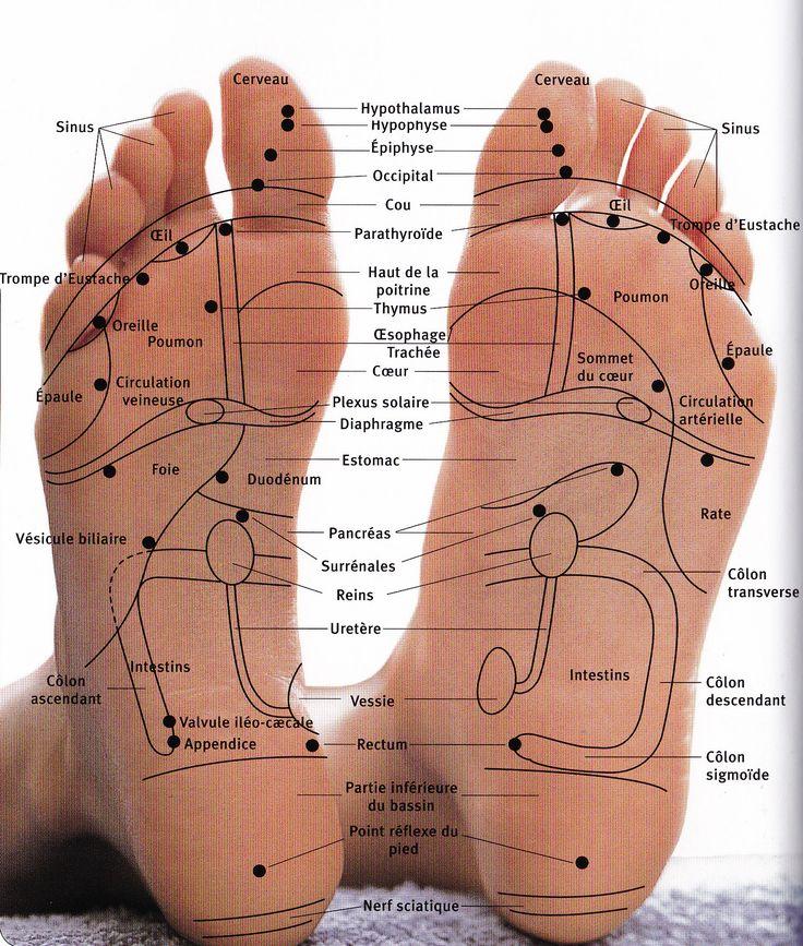 Les pieds digitopuncture 1