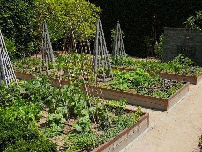 1063 best Garden Edible images on Pinterest Veggie gardens