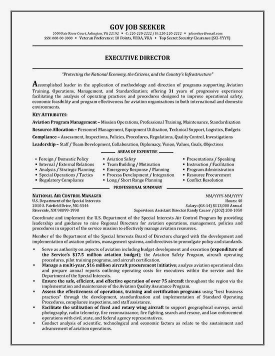 Top Government Resume Templates  Samples Top Government Resume