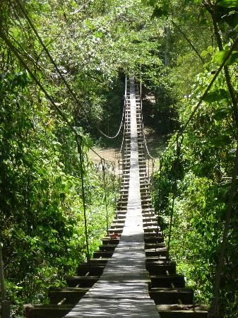 Falmouth, Jamaica  Not sure I could cross on this bridge!