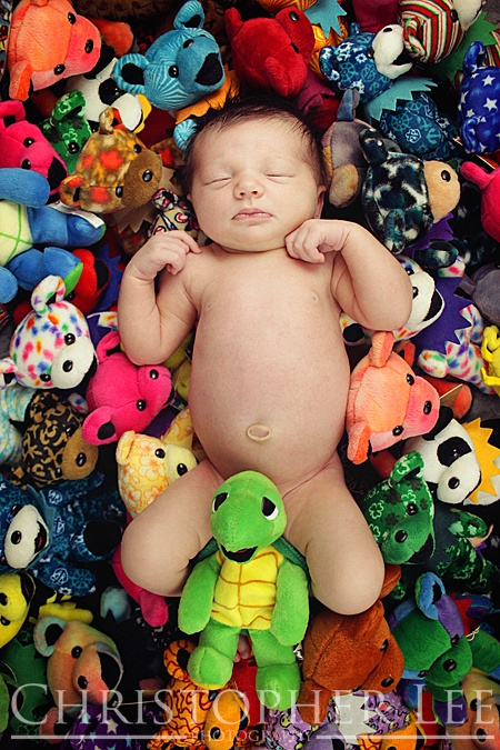 Hippy baby with the Grateful Dead Bears - Christopher Lee Photography - https://www.facebook.com/pages/Christopher-Lees-Studio/242847662408833