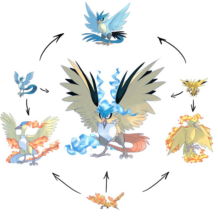 Hexafusion legendary birds, kinda hope fusions will be next in the future pokemon games