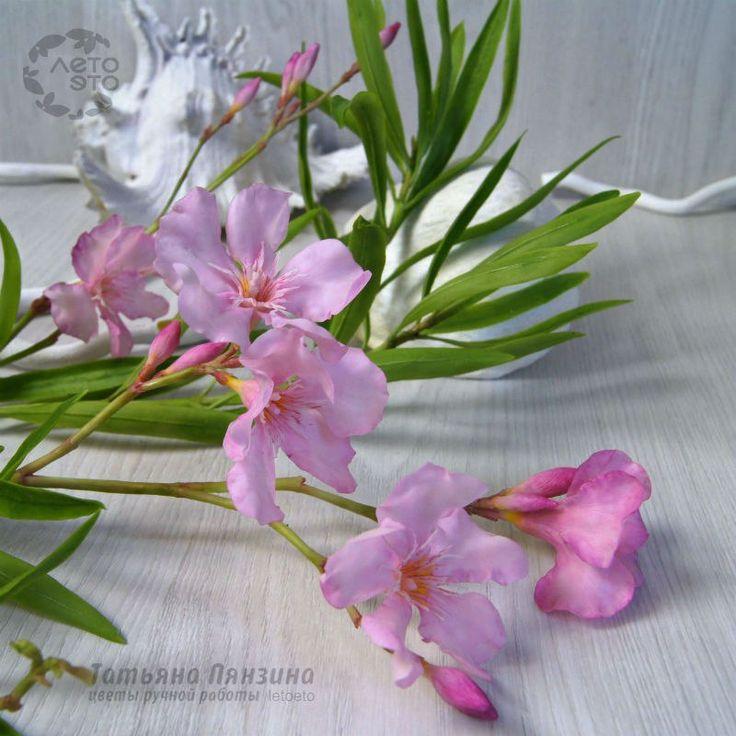 🌸 Цветы из холодного фарфора. Пянзина Татьяна