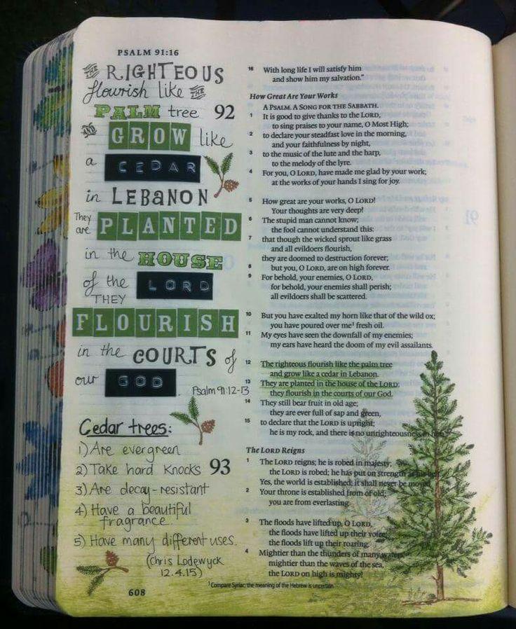 Psalm 92: 12-13 in journaling Bible, tree drawing, stickers, marginalia