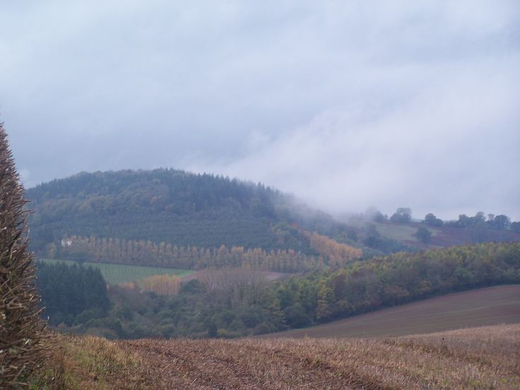 Misty Welsh hills