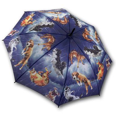 Raining Cats And Dogs Bubble Umbrella