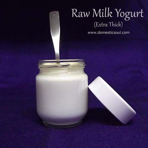 Recipe: Raw Milk Yogurt (Extra Thick!) - and a review for the Euro Cuisine YM80 yogurt maker. #rawmilk #realmilk