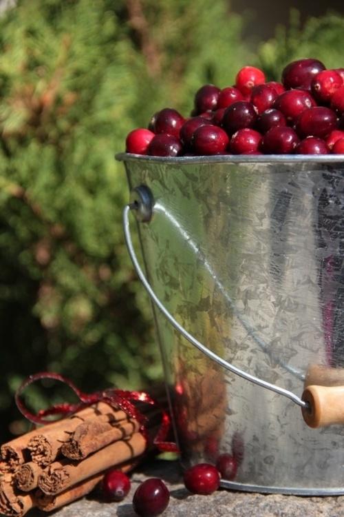 cherries / cerejas