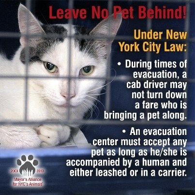 NYC has a law that prohibits cab drivers & evacuation centers from turning away pets during a disaster. Does your city have this? Bring it up at your local council meeting! -- Mayor's Alliance for NYC's Animals