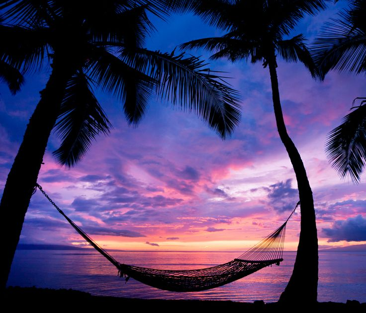 Sunsets: Relaxing Sea Water Place Relax Trees Beautiful Nature Sun ...