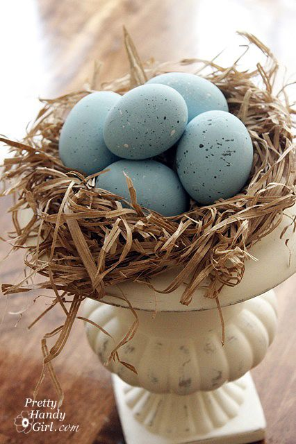 I collect bird's nests so I love this idea >>>  Robin's Eggs + Spring Decor + Spring Vignettes
