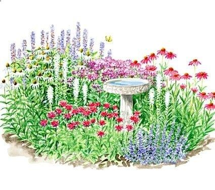 photos of full sun perennial flower beds butterfly garden plants butterfly garden plans - Flower Garden Ideas Illinois