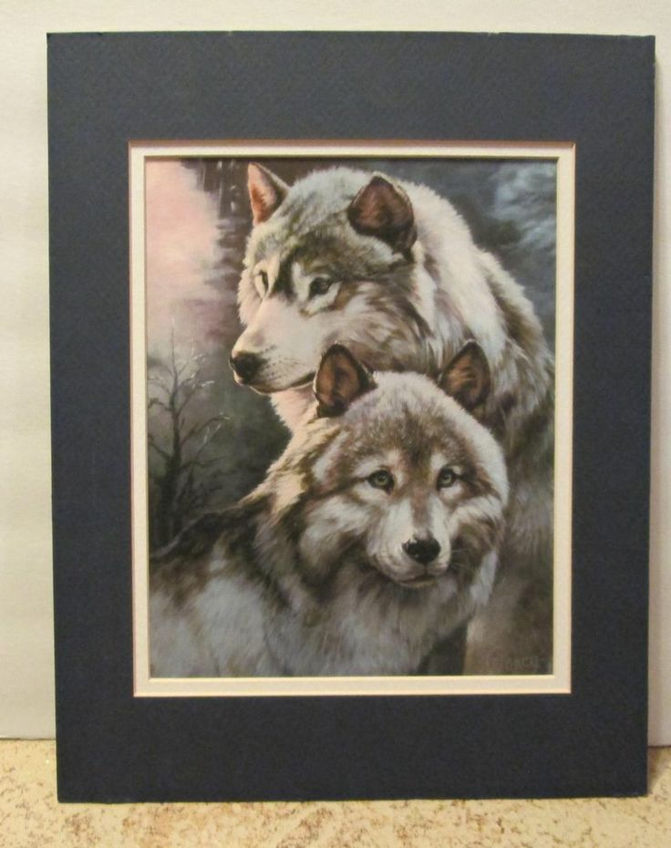 wolf painting print by clancy sentinels matted frame collectible art beautiful collectibles pinterest wolf painting - Wolf Picture Frames