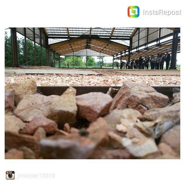 @ spirredda #aquaepatavinae #invasionidigitali @invasionidigitali | Patrimonio archeologico di Montegrotto Terme