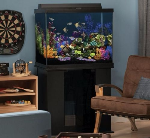Best 55-60 gallon fish tank (with stand) and aquarium kit for sale