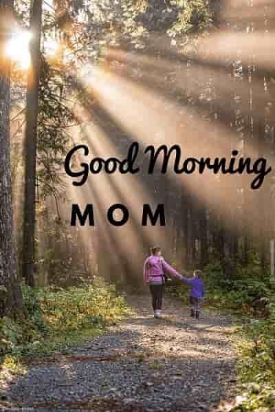 Good Morning Mom Subhodhayam Good Morning Wishes Good Morning