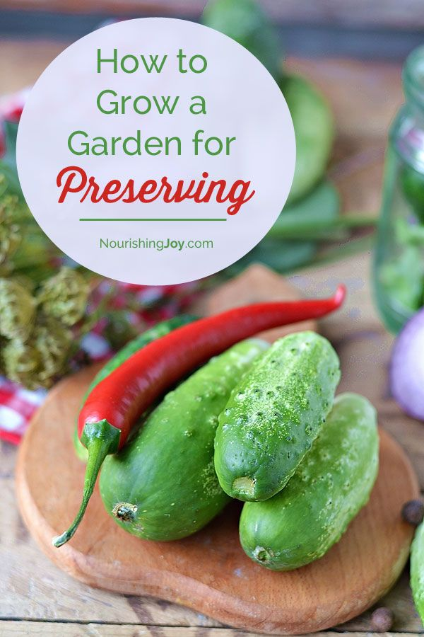 How to Grow a Garden You'll Actually Use