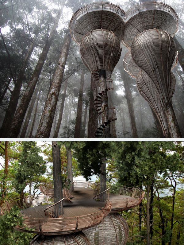 Roost Treehouse. It is designed to copy the natural curves found in nature. The purpose was to build a treehouse that could blend in with the surrounding forest. The treehouse is built using sustainable materials. The design by Antony Gibbon looks like it came straight from Lothlorien (The Eleves' forest home) in Lord of the Rings.