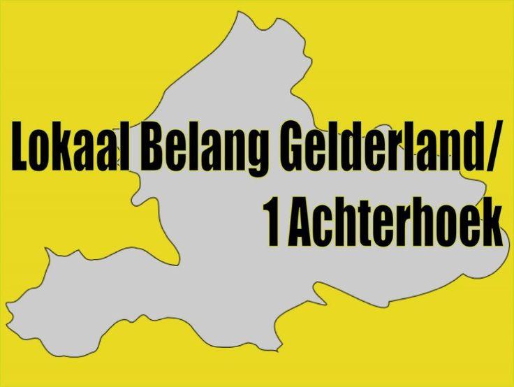 Standpunten Lokaal Belang Gelderland
