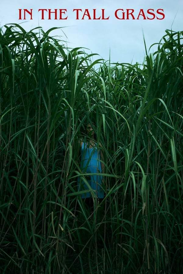 Nonton Film In the Tall Grass (2019) Sub Indonesia in 2020 | Tall ...